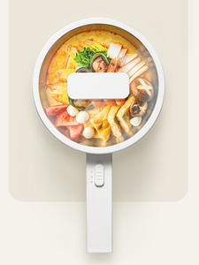 Electric Cooker Cooking-Pot Steaming Multi-Functions Portable Skillet Mini 220V Net Desktop
