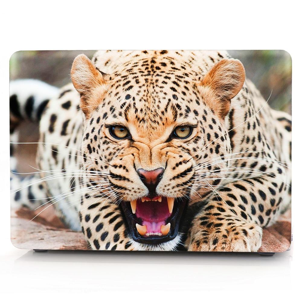 野豹 (1)