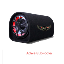 5 pulgadas 12v 12v 110v 220v 120Watts 4 ohm coche de Audio de alta fidelidad de Motor activo Van tubo para altavoz boom caja de altavoz Subwoofer con Bluetooth
