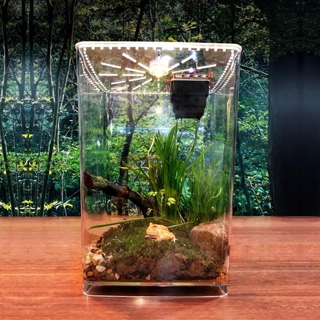 Transparent Reptile Box 2