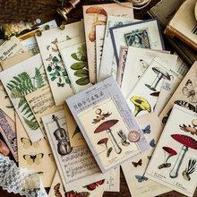 30 Pçs/set Escrita Criativa Saudação Cartões Postais Presente Antiga Floresta Animais Plantas Cartões Lomo Do Vintage Escrita Mensagem Papel Pad
