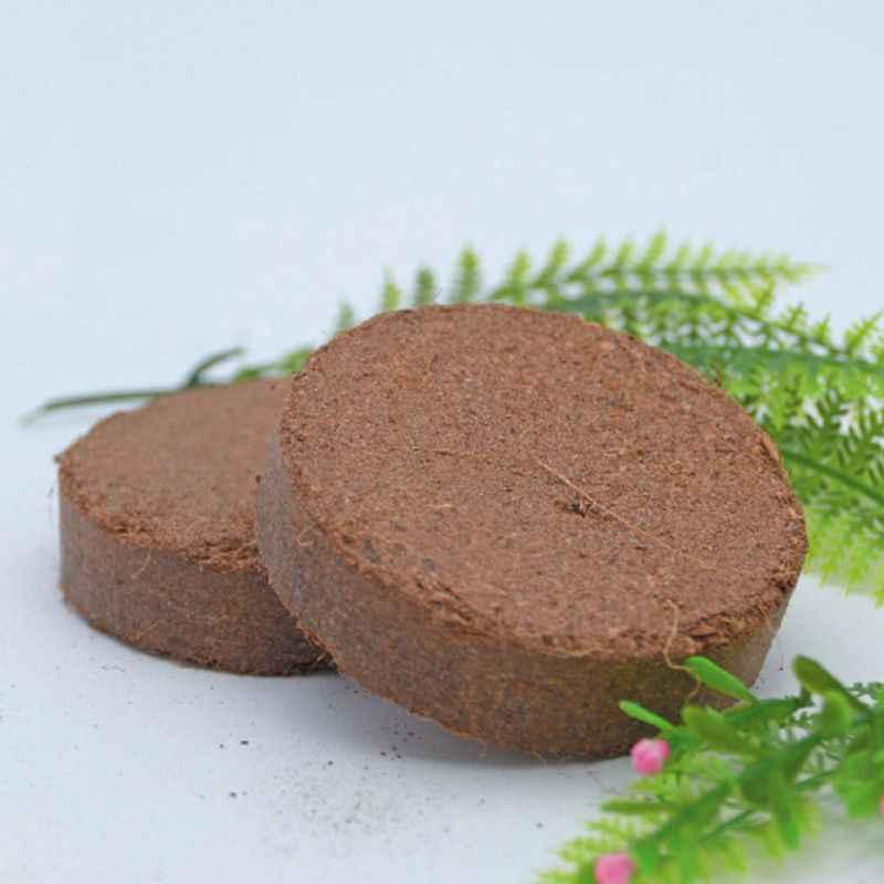 Ladrillos de sustrato de fibra de coco Natural elementos esenciales del suelo para terrarios de reptiles