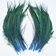 20pcs Peacock Feathers wing 30-35cm/12-14 plume decoration feathers for clothes Natural Feathers for Crafts Carnaval Assesoires wholesale 4 8cm 1 6 3 2 inch pheasant feathers for crafts clothing costume feathers for jewelry making decoration natural plumes