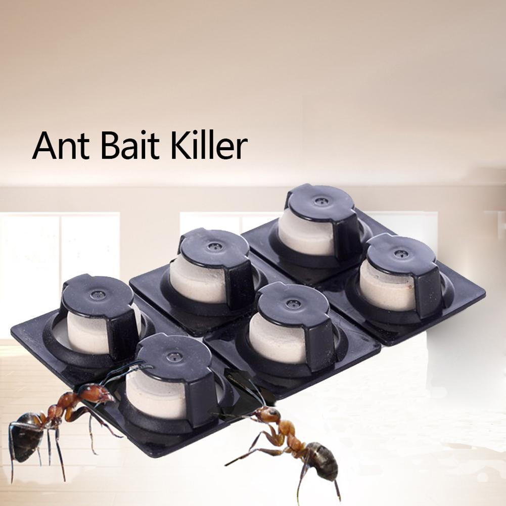 Japanese Household Indoor Anticide Medicine Kill Ant Solid Food Bait Ant Medicine Insect Repeller Pest Control Home Decoration