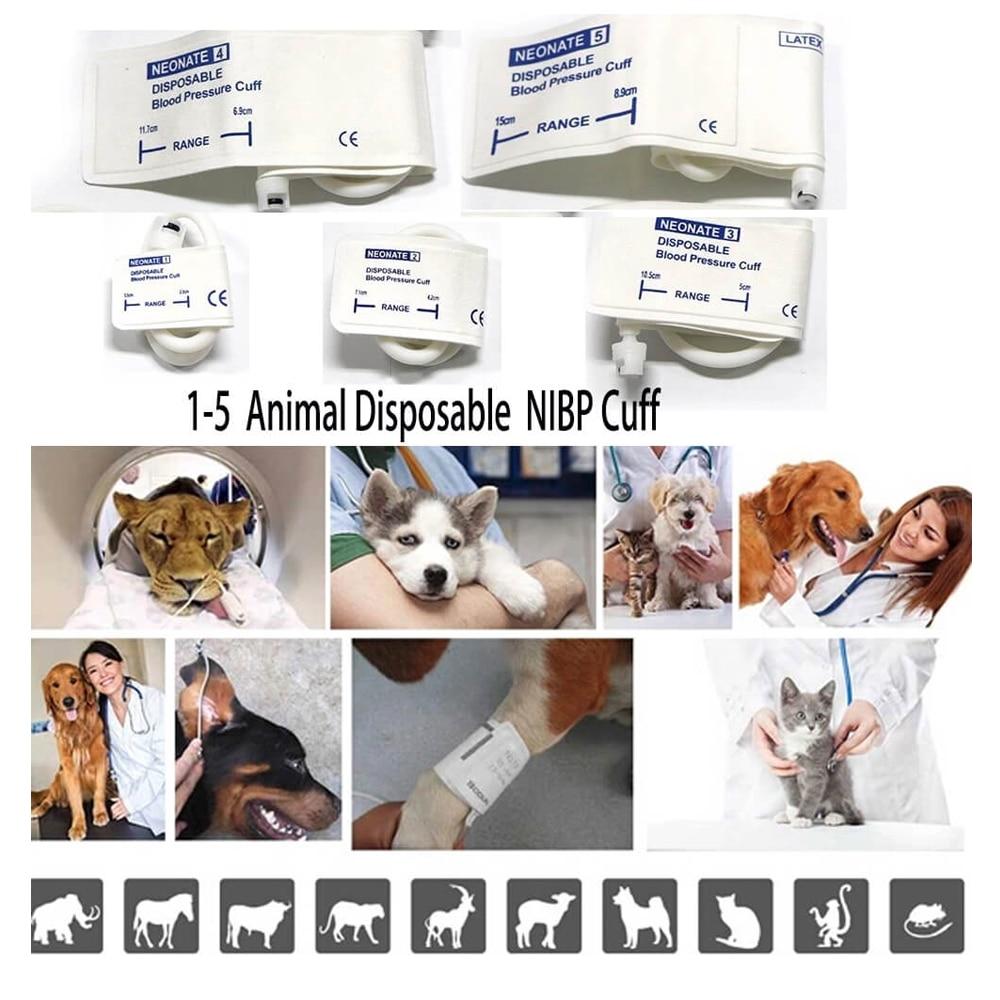 Ветеринарные Bluetooth хирургические внутриоперационные мониторы для домашних животных клиника ЭКГ SPO2 HR SYS DIA RESP Temp мониторы ветеринарное оборудование