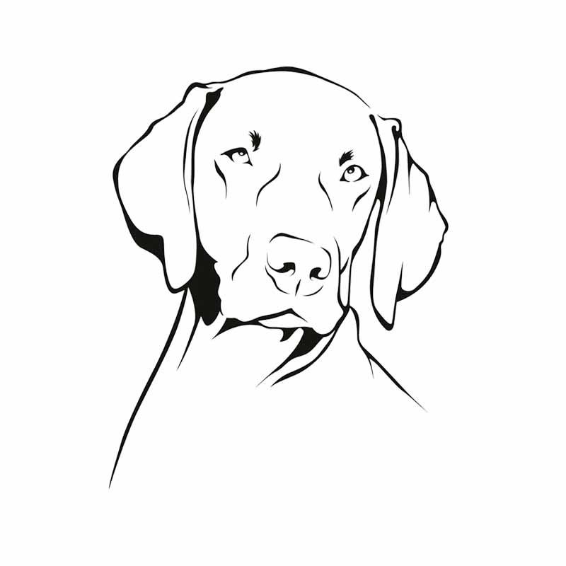 13cmx16cm собака Веймаранер животные kk виниловая наклейка на