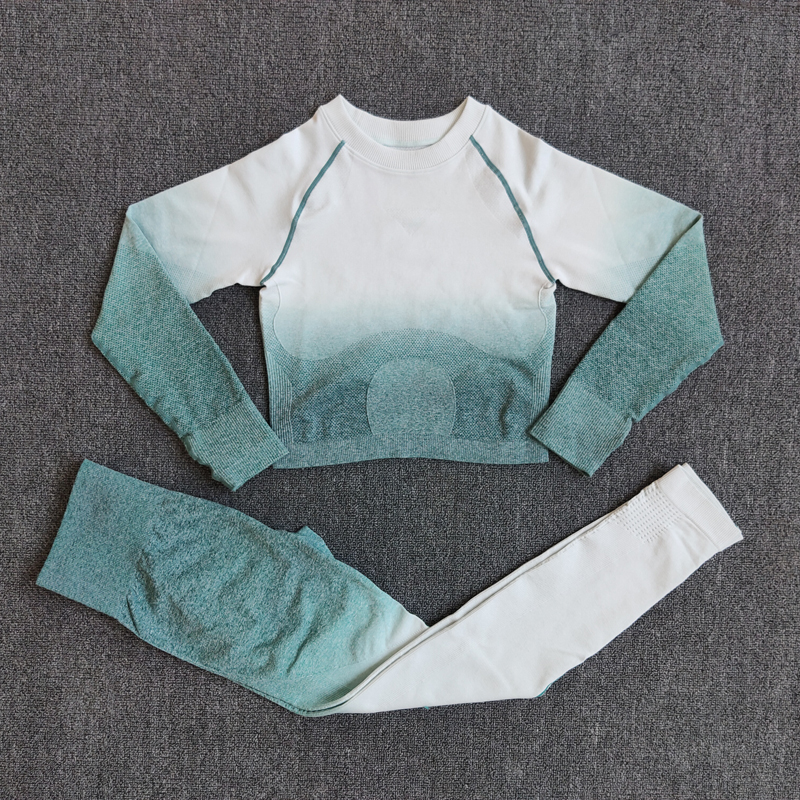2PCS Ombre Seamless Women Sports Suit Gym Leggings Workout Clothes Long Sleeve Fitness Crop Top Shirts Pants Yoga Set Tracksuit
