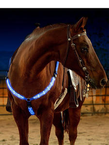 Riding-Equipment Webbing Horse-Harness Equitation Cheval Breastplate Night-Visible-Horse