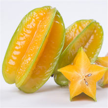 20 pcs Organic Imported Carambola Bonsais Star Fruit Tree Shrub Fruit Edible Starfruit for Home Garden Flower Pot Planters(China)