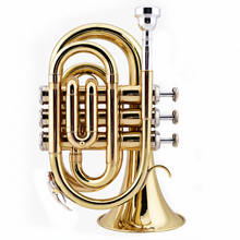 Il belin Mini Pocket Trumpet Bb Flat Brass Wind Instrument with Mouthpiece Gloves Cleaning Cloth Carrying Case