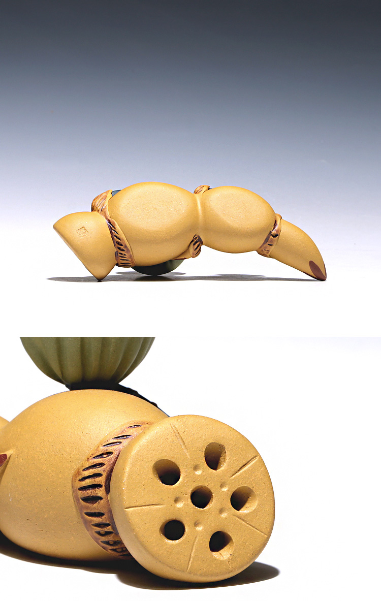 chá pet lotus capa grande eles aproximadamente lama artigos de mobiliário