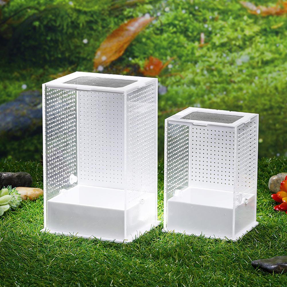 Transparent Acrylic Reptile Feeding Box Insect Box Mantis Breeding Box Insect Reptile Cage Terrarium Feeding Box