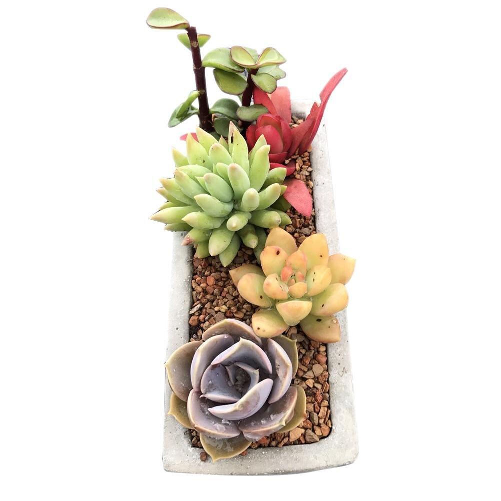 Image 5 - 1PC Silicone Mold Clear Water Concrete Cement Flower Pot Silicone Concrete Mold Rectangular Flower Pot Silicone Concrete MoldsClay Molds   -
