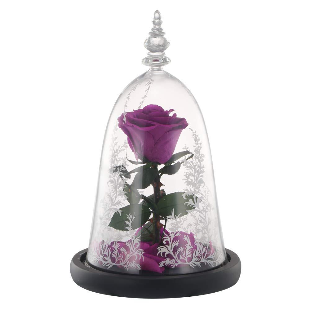 6 стилей,, свежие цветы красавицы и чудовища, красные вечные розы в стеклянном куполе, Рождественский подарок на день Святого Валентина, Прямая поставка - Цвет: Purple rose