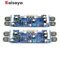 Kit de amplificador de potencia de L12-2 de Audio, 2 uds, distorsión Ultra-baja de 2 canales, Kit clásico AMP DIY, tablero terminado A10-011