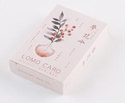 L39-Dream flower бумажные поздравительные открытки lomo card (1 упаковка = 28 штук)