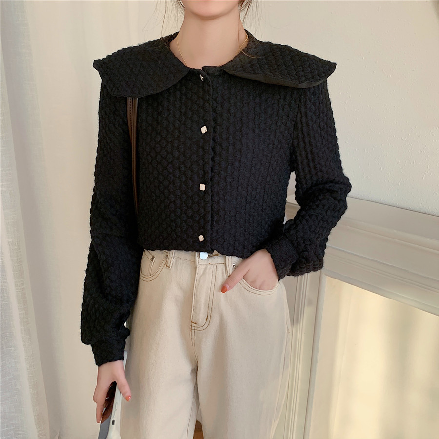 Hfb5bc545145848fcb6688ca39d4b2b1fE - Spring / Autumn Big Lapel Long Sleeves French Lace Buttons Blouse