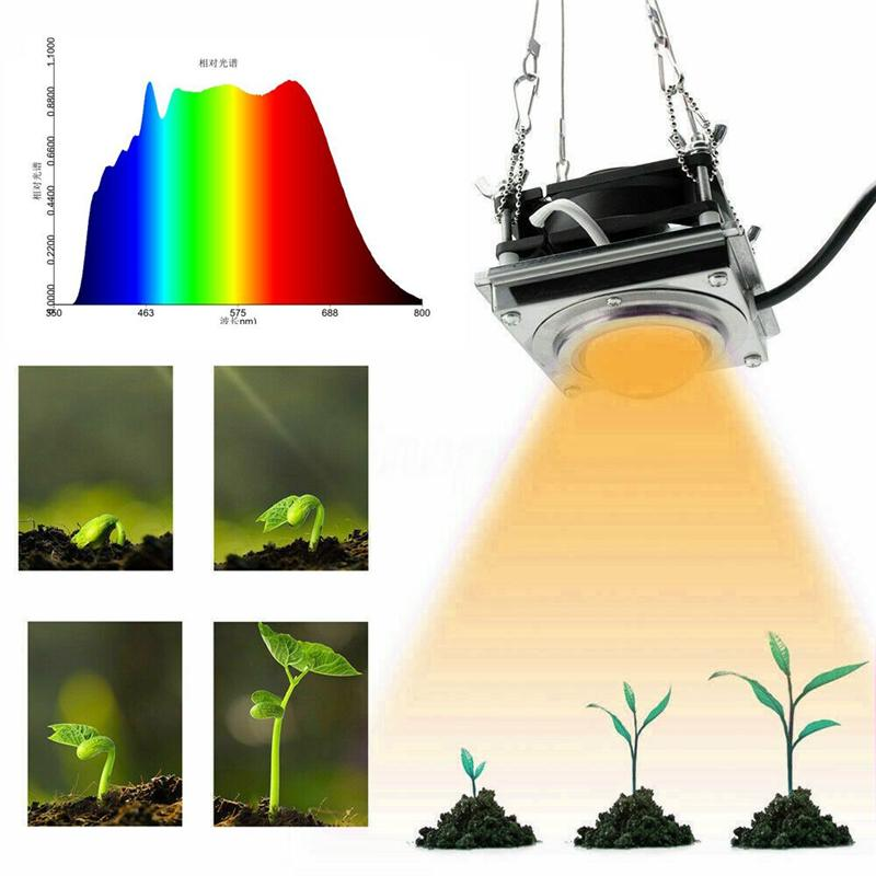 300W COB LED Grow Light Indoor Phyto Lamp For Plants Full Spectrum Led Growth Lamp Grow Tent Box Lamps For Home Plants Flowers