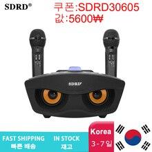 SD306 נייד משפחה קריוקי מערכת שני מיקרופונים אלחוטיים עם 20w סטריאו Bluetooth רמקול הקבל קריוקי מיקרופון
