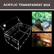Коробка для домашних животных ящик для рептилий практичный портативный прозрачный акриловый домашний декор насекомое хладнокровные животные Террариум для рептилий