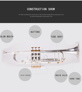 Image 2 - Музыкальный инструмент BULUKE, Bb, с плоской рамой, сортировка по стандарту, с плакированным покрытием, профессиональная производительность