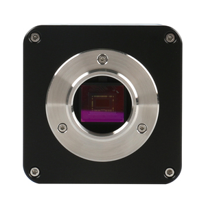 "Image 5 - Autofocus sony imx290 hdmi tf vídeo foco automático indústria microscópio câmera + 180x c montagem lente + suporte + 144 led anel luz + 10.1 ""lcd"