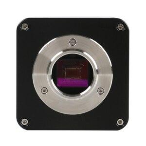 """Image 5 - Цифровой фокус SONY IMX290 HDMI TF видео Автофокус промышленный микроскоп камера + 180X C Mount объектив + Стенд + 144 светодиодная кольцесветильник + 10,1 """"ЖК дисплей"""