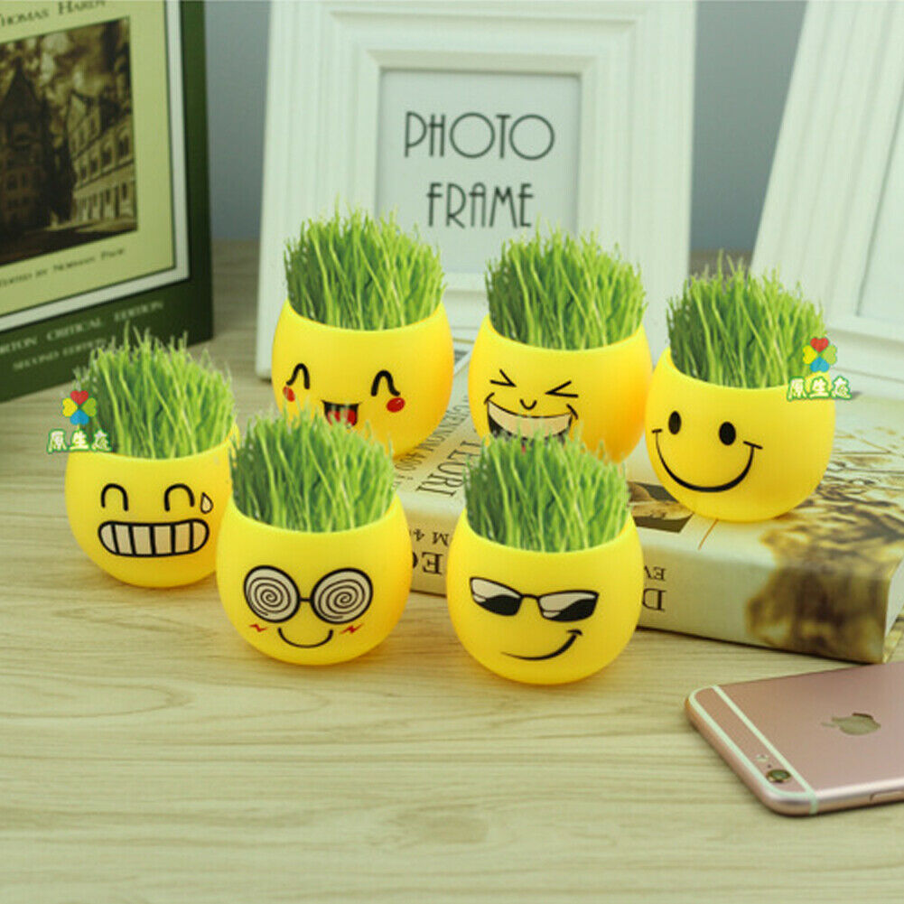 Hot Expression Plant  Mini Novel Plastic Bonsai Grass Doll Head Home Cute Yellow Succulents Pot Desk