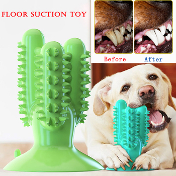 NEW Dog Toothbrush Toy 1