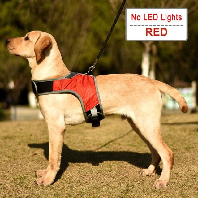 SASCD LED Luminous Hundegeschirr Hundehalsband Sicherheit Reflektierende Harness Vest for Husky Sch/äfer Labrador Medium Large Hunde Pet Supplies