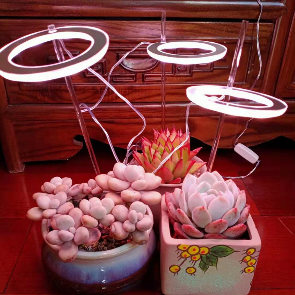 5V LED USB Angel Ring Plant Grow Light For Succulent Full Spectrum Phyto Lamp Sunlike Indoor Flower Greenhouse Seedling