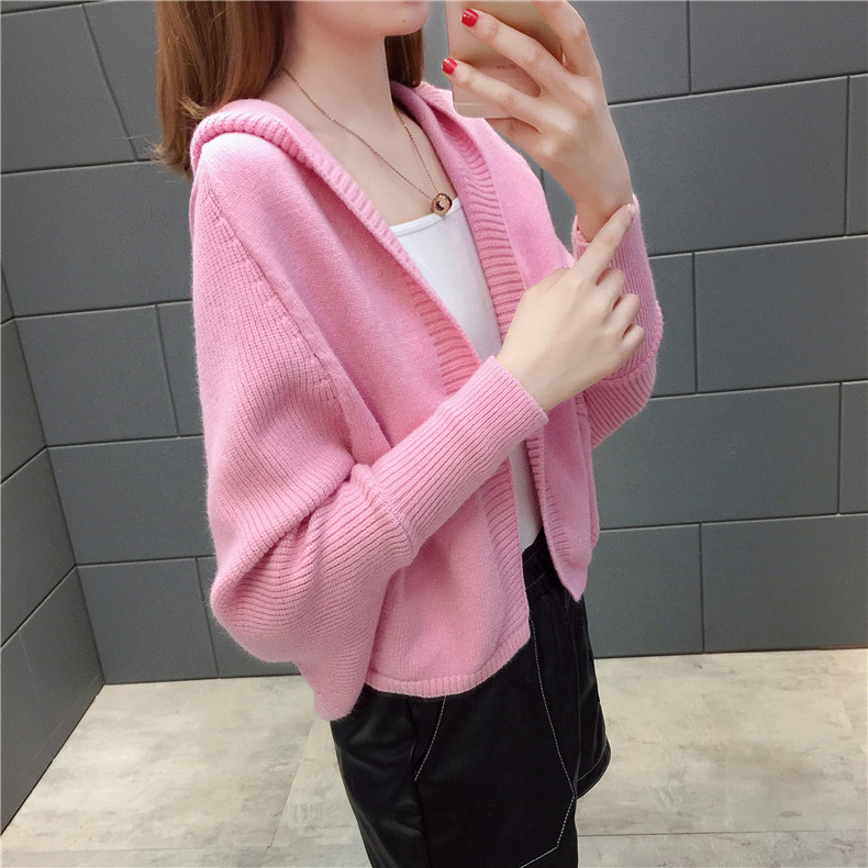 2019 Free send New style Korean loose and comfortable Autumn women Cardigan Sleeve of bat Hooded Sweater coat 134