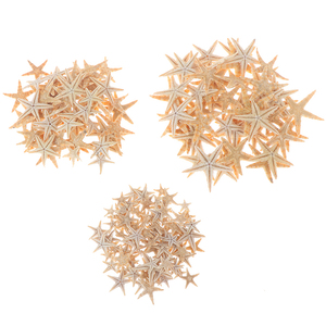 100pcs Sea Shells Size:0.5-3cm Mini Starfish Craft Decoration Natural Sea Stars DIY Beach Cottage Wedding Decor Crafts Wedding