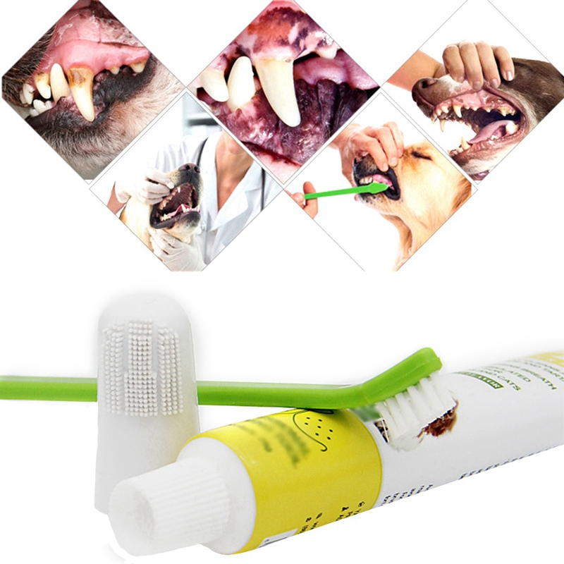 Pet Oral Care Supplies Pet Cat Dogs Toothbrush Toothpaste Care Set Included 3-sided Toothbrush Finger Toothbrush Toothpaste image