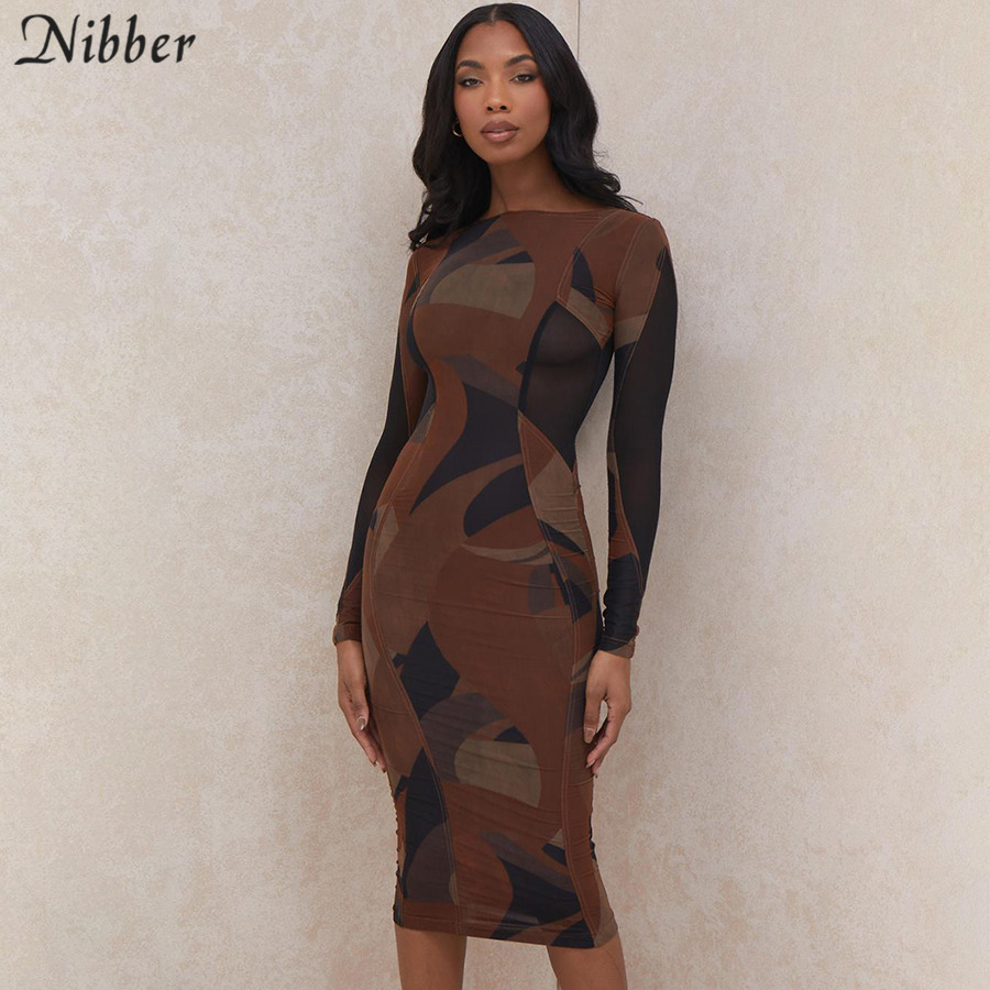 Nibber Basic Round Neck Patchwork printing Bodycon Midi Dresses For Women 2021 Spring Streetwear Party Night Long Sleeve Dresses|Dresses| - AliExpress