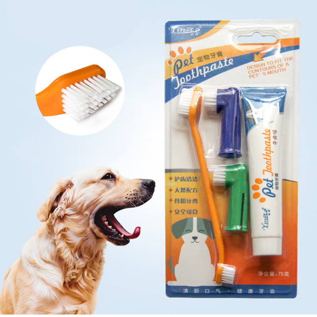 Toothpaste & Toothbrush Set