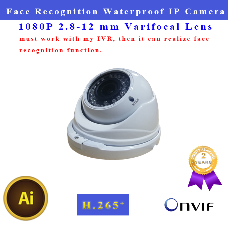 Face Recognition 1080P IP Camera Outdoor Support Onvif 2.8-12 mm Lens Infrared H.265 264 POE Waterproof Dome For Security Camera