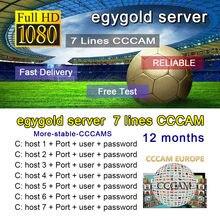 Gtmedia-egyDVB-S2 linha de cabo egygold líneas europa oscam ccam para gtmedia v7s v8 nova v9 freesat v7