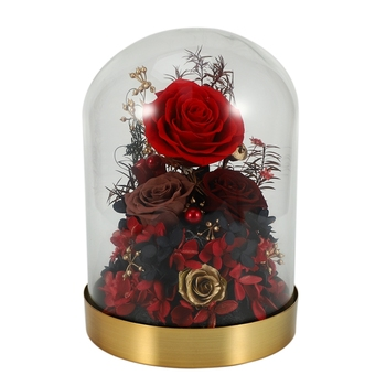 Rose in Glass,Enchanted Rose, Glass Dome Black Wood Base, Valentine's Party Gifts, Wedding Gifts, Best Gift for Her