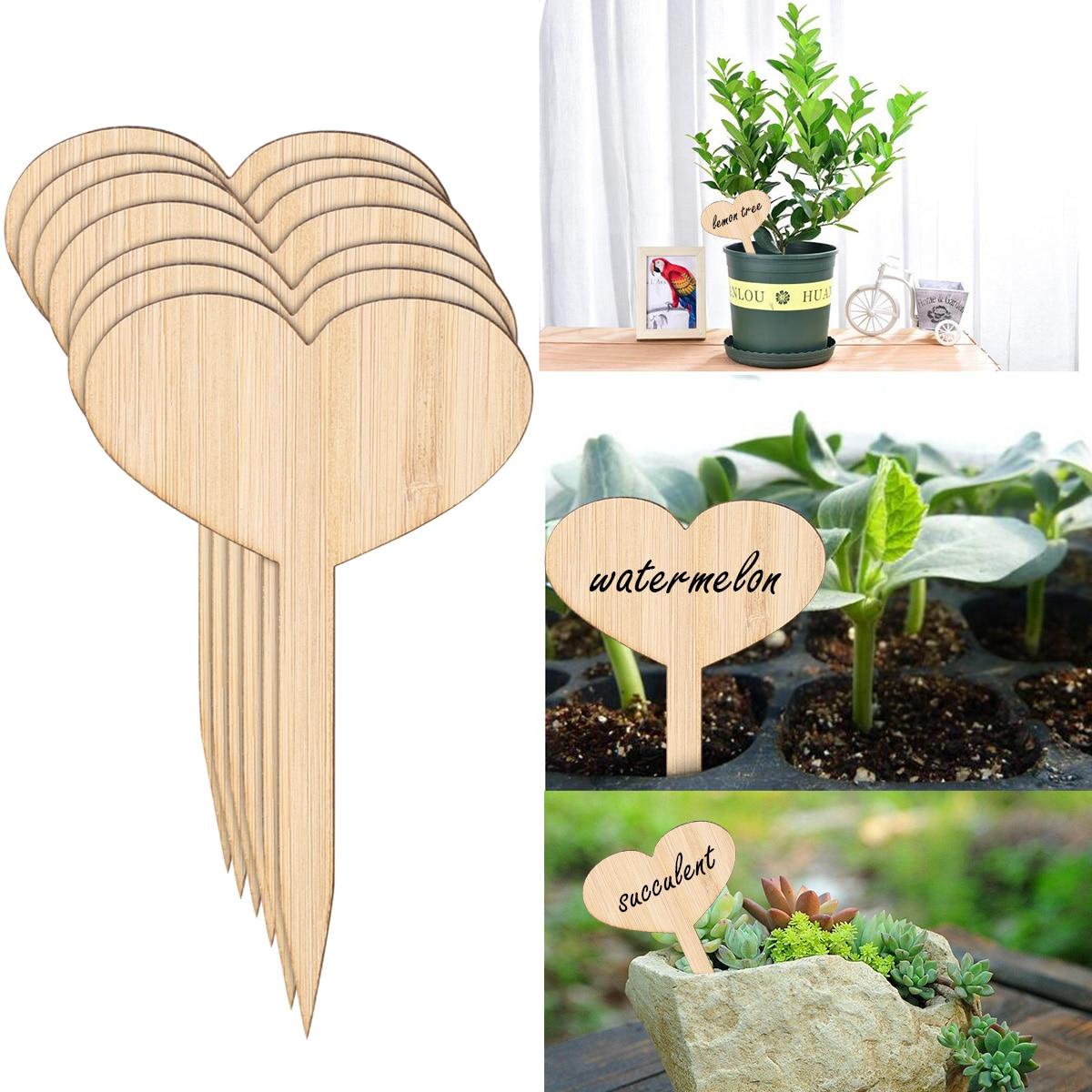50pcs Natural Bamboo Plant Seed Labels