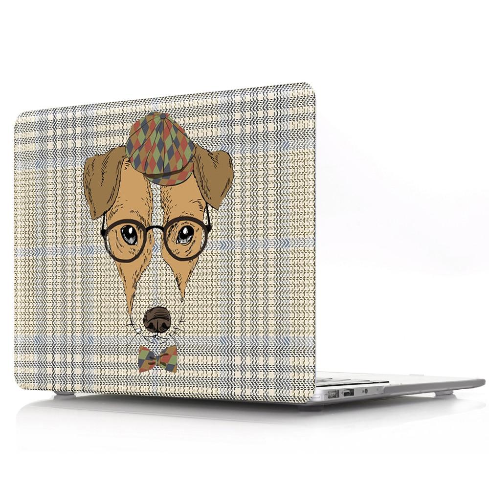 眼镜狗 (2)