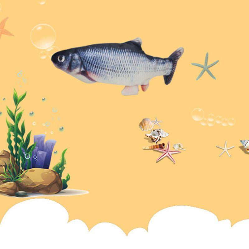 Baby Fish Toy 2