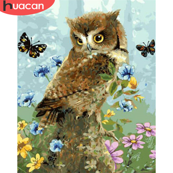 HUACAN DIY Pictures By Number Owl Kits Drawing On Canvas Painting By Numbers Animal Hand Painted Picture Art Gift Home Decor