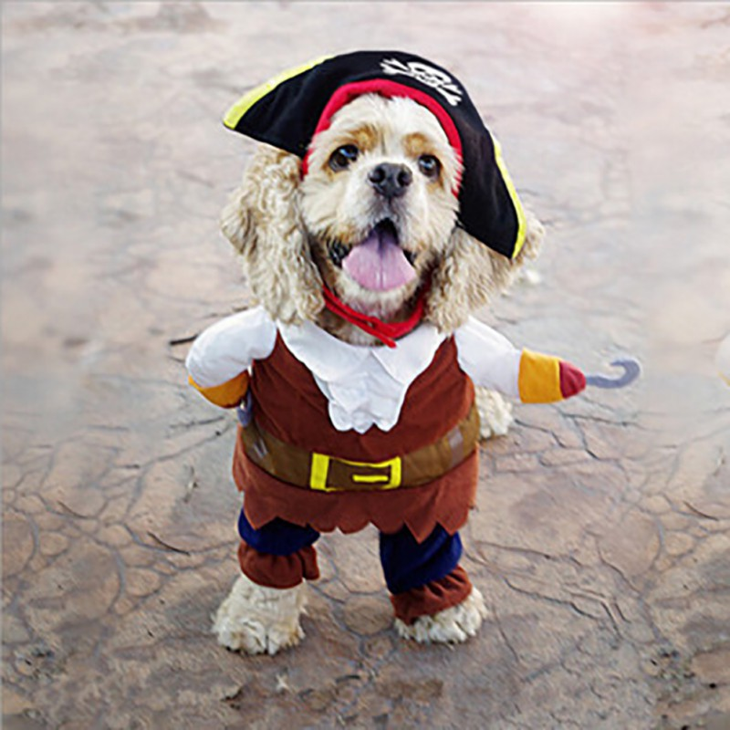 Pet Dog Costume Pet Cool Pirate Dress Up Cosplay Clothing For Pets Small Medium Dogs Halloween Party Decorations|Dog Coats & Jackets|   - AliExpress