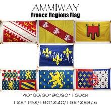 AMMIWAY fransa Alsace Lorraine Auvergne fransa ile de Bourgogne Franche Comte bayrakları fransız resmi olmayan bayrağı tıkalı de la Loire