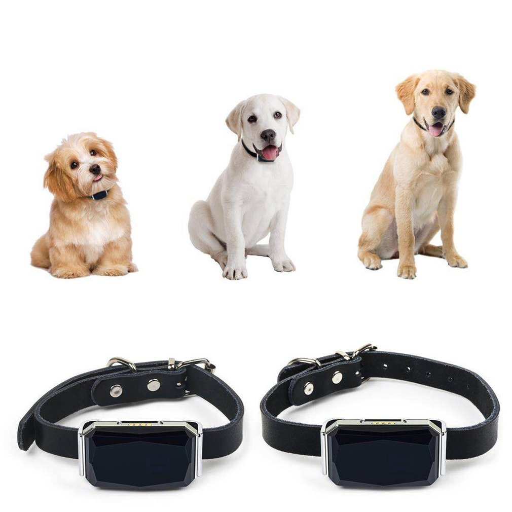 Electric Gps Dog Collar Tracer Practical Anti-Lost Waterproof Puppy Dogs Mini Tracking Pet Collars 1 Set