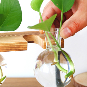 Image 4 - Glass Bottle Vase Hydroponic Plant Transparent Vase Wooden Frame Coffee Shop Room Decor Table Desk Decoration Vase terrarium