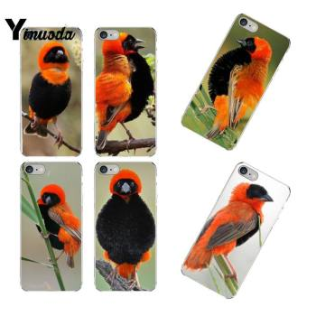 Yinuoda Animal Bird Red Bishop Custom Soft Phone Case for iPhone 12 8 7 6 6S Plus X XS MAX 5 5S SE XR 11 12 pro promax image