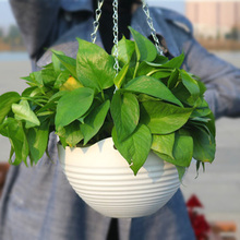 New Flower Pot With Chain Plastic Hanging Planting Basket Home Garden Indoor Outdoor Balcony Planting Pots Dropshipping