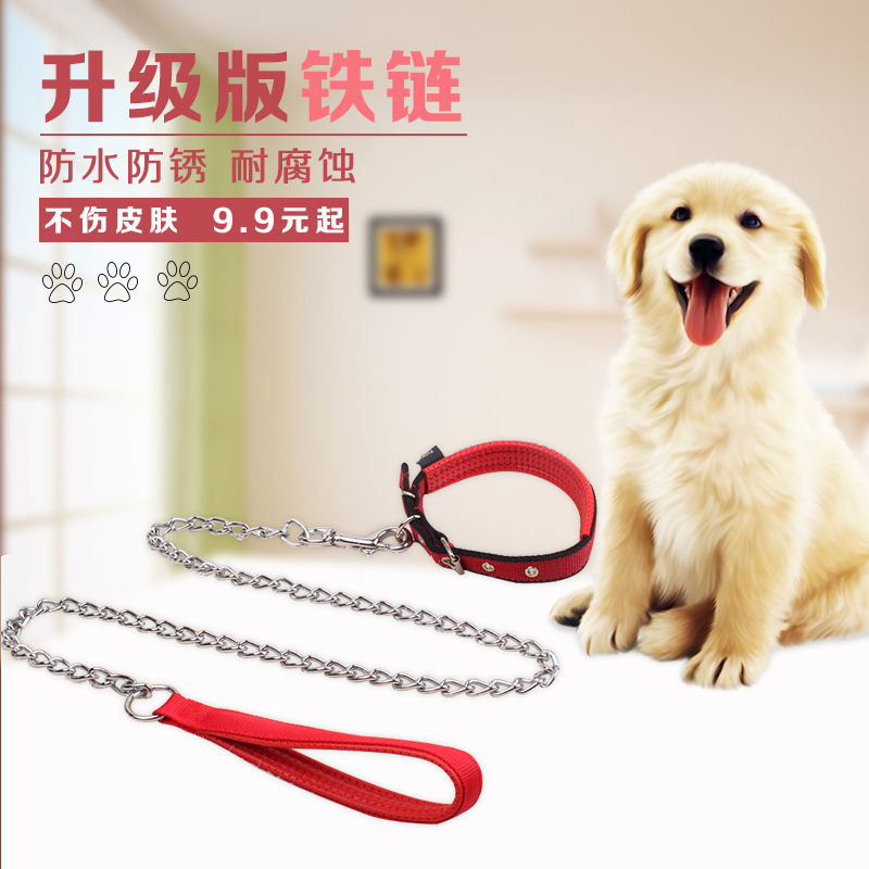 Iron Chain Anti-Bite Dog Teddy Lanyard Neck Ring Set Suppository Dog Chain Traction Small Medium-sized Dog Dog Lanyard Sub Suppl